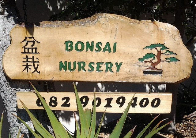 Bonsai Nursery logo